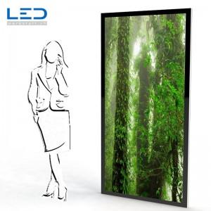 LED Trennwand, Duschtrennwand Doppelseitig